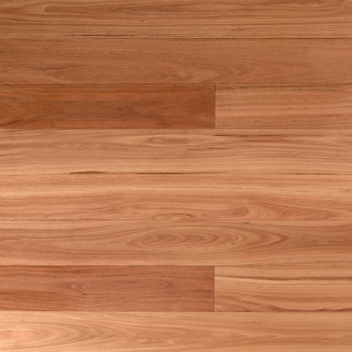 Blackbutt - Wooden-Land Australian Collection 14mm Engineered - Advanced Flooring Services