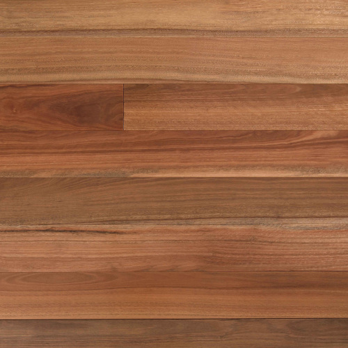 Spotted Gum - Wooden-Land Australian Collection 14mm Engineered - Advanced Flooring Services