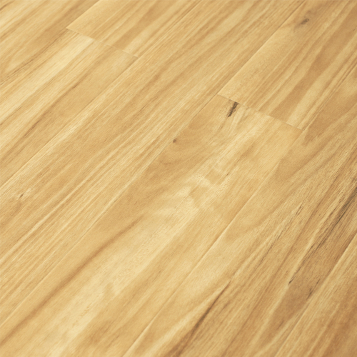 Blackbutt 91008-1 - Tanoa Flooring 12mm Gloss Laminate | Advanced Flooring Services
